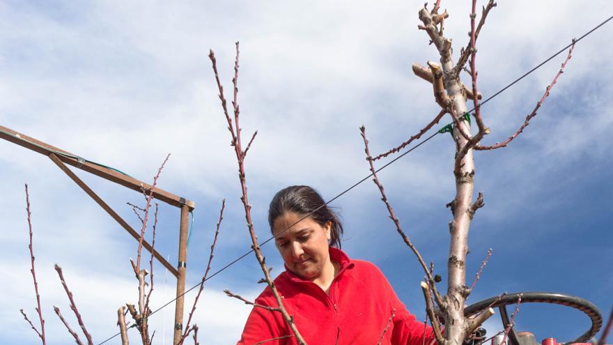 El Gobierno de Aragón pone en marcha diez medidas para romper la brecha de género en el campo