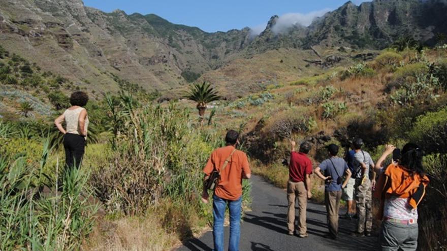 El grupo de investigadores en el Barranco de La Laja (La Gomera) observando el gradiente de vegetación.