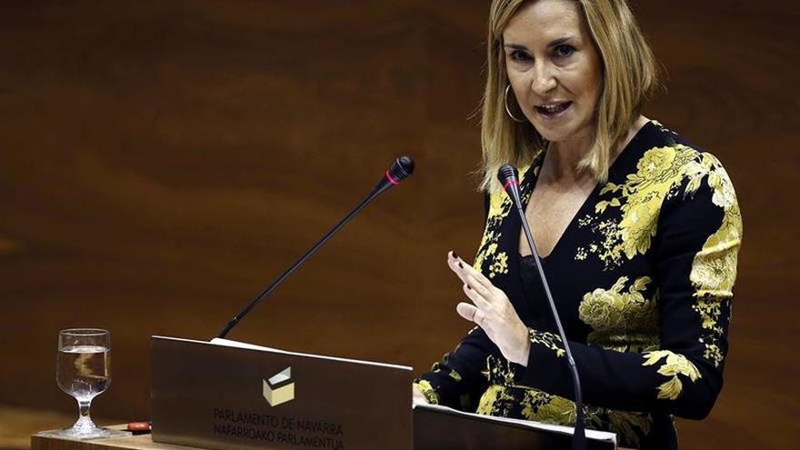El PP pide la reprobación de la consejera por lo dicho sobre las detenciones en Alsasua