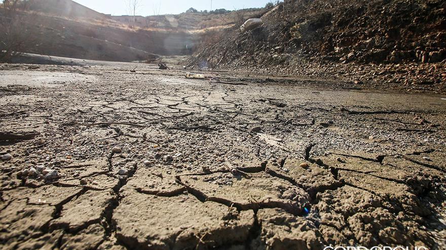 Efectos de la sequía en Córdoba I | MADERO CUBERO