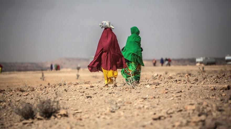 El número de personas en una situación alimentaria crítica en África central y occidental podría llegar a los 57,6 millones a finales de este año por el impacto en las economías de las medidas para contener la propagación del coronavirus, señaló hoy el Programa Mundial de Alimentos (PMA).  EFE/ Pablo Tosco/Archivo