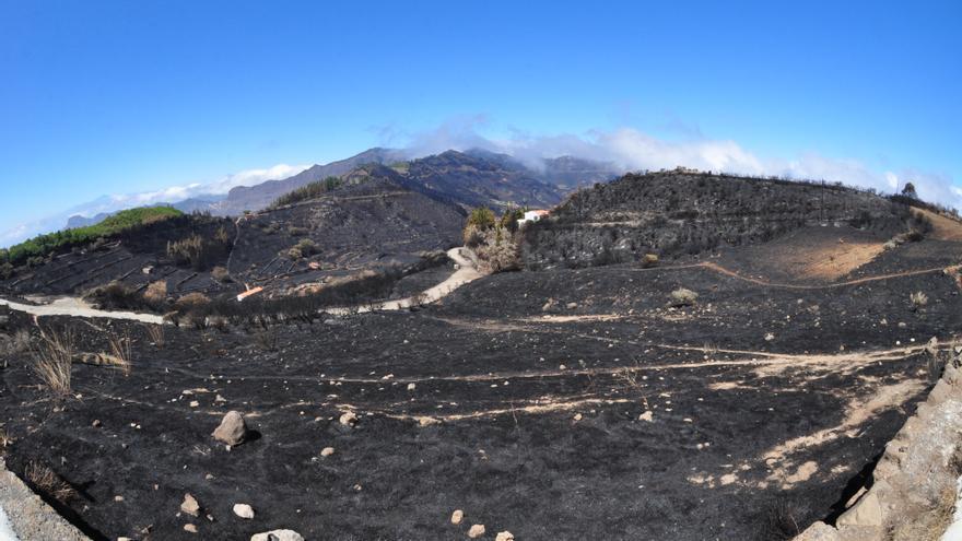 Paisaje calcinado en Gran Canaria