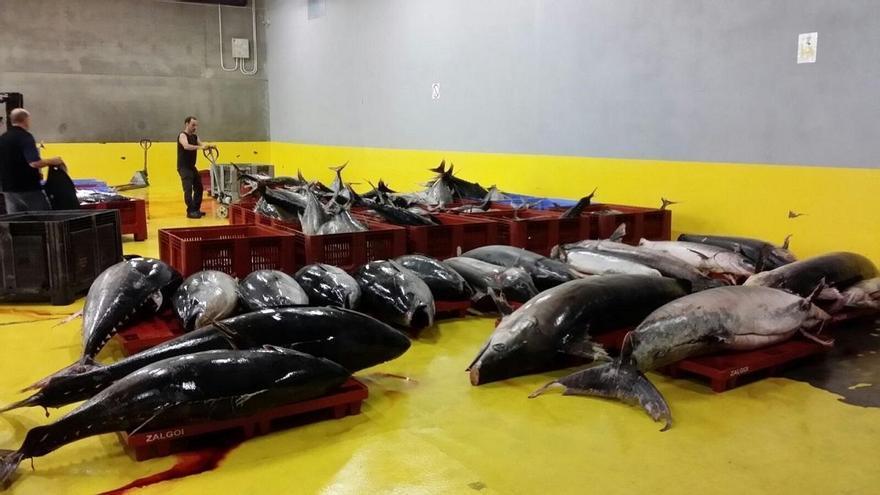 Dos pesqueros de bandera francesa son retenidos en el puerto de Pasaia por no declarar sus capturas de atún rojo