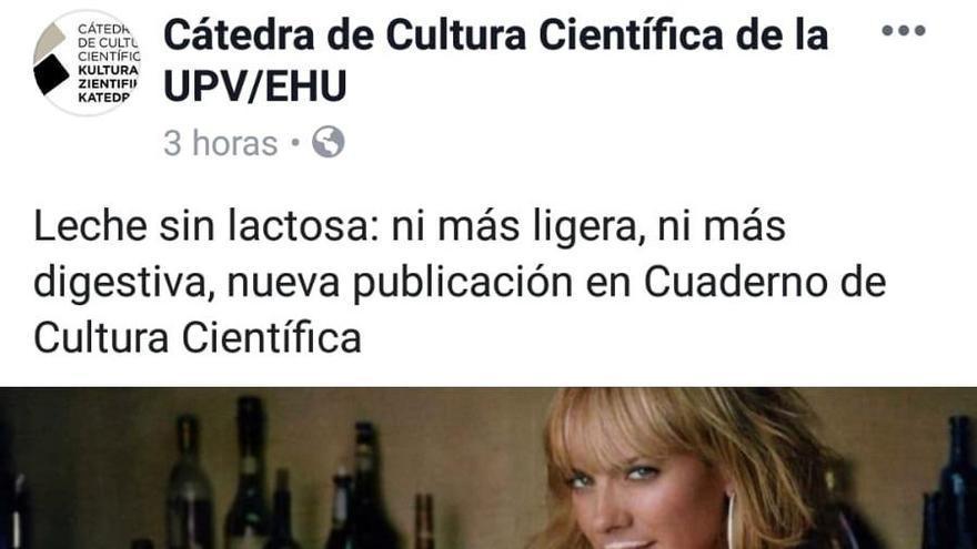 Fotografía publicada por la Universidad del País Vasco