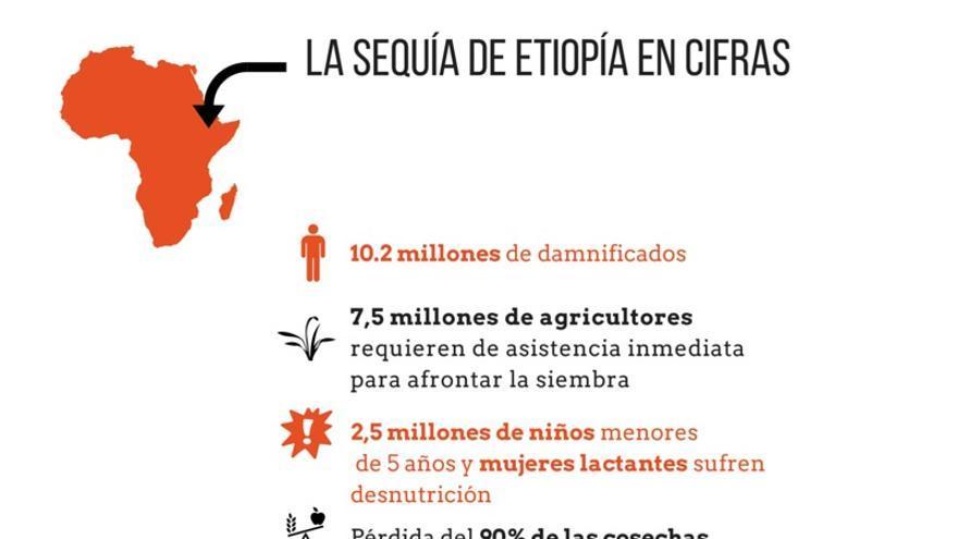 La sequía de Etiopía en cifras