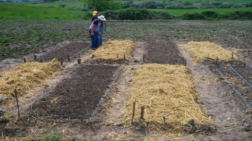 Centro Agroecologico Demostrativo de Carcaboso / Asociación Intermunicipal Red Territorios Reserva Agroecológicos. Red TERRAE