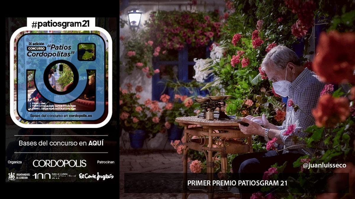 Primer premio de la IX edición del Concurso 'Patios cordopolitas' #patiosgram21