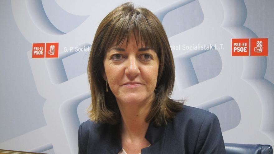"""PSE acusa a EH Bildu y Podemos de plantear enmiendas a los Presupuestos vascos """"para cambiar gobiernos, no políticas"""""""