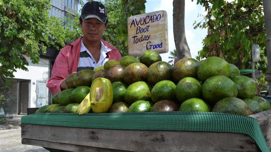 El aguacate vietnamita, posible rival de México en el mercado de EE.UU.