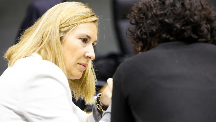 """El PPN expresa su """"alarma"""" ante la propuesta de declarar el 3 de diciembre como Día de Euskadi"""