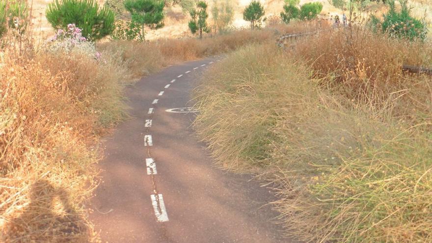 Carril bici a Rabanales.