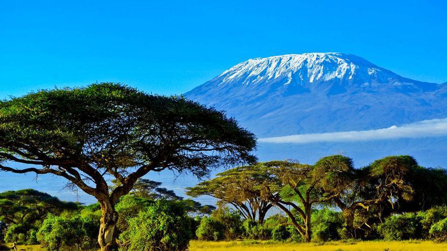 El Monte Kilimanjaro desde la sabana.
