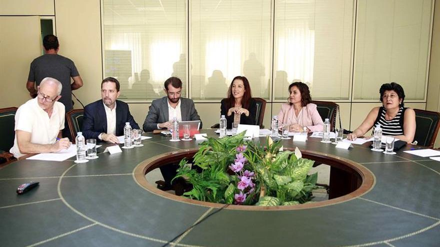 La vicepresidenta del Gobierno de Canarias, Patricia Hernández (3d), durante la reunión del Consejo Canario de Relaciones Laborales, que ha abordado, entre otros asuntos, el Plan Especial de Actuación Inspectora, con la participación representantes de las patronales y los sindicatos.