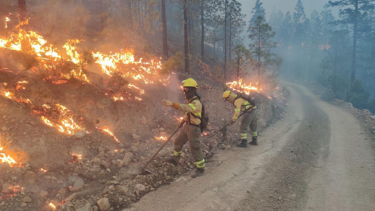 Operarios de BRIFOR trabajando en la extinción del incendio de Arico