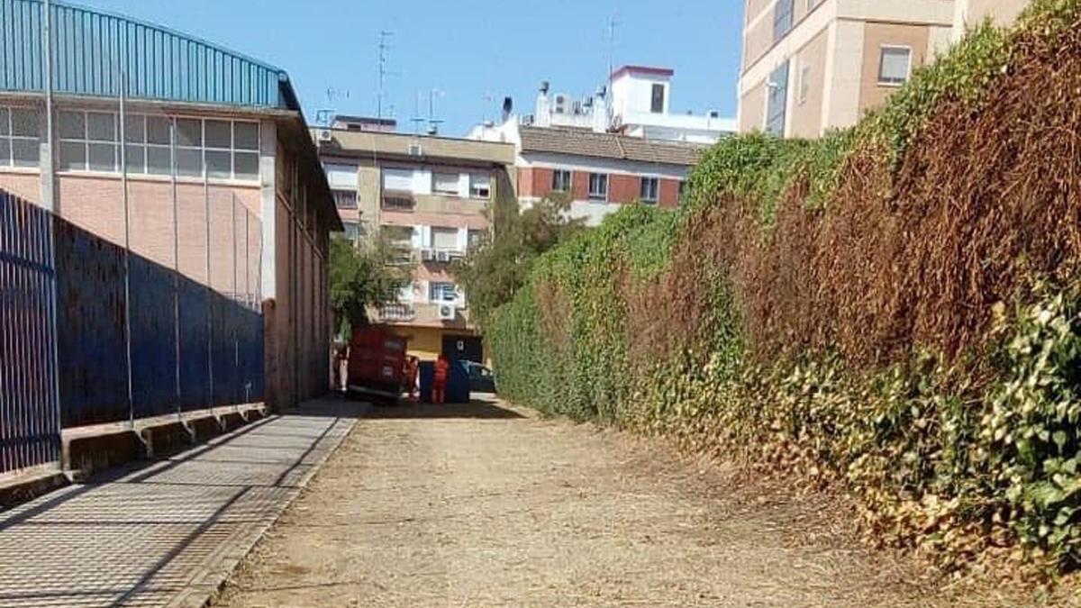 El nuevo acceso desde Fátima al parque de Levante