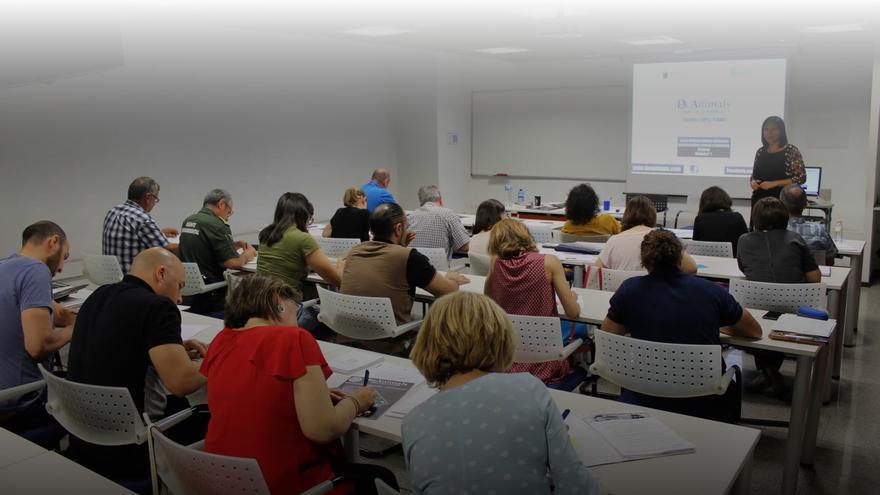 Raquel López Teruel, autora del blog, en uno de los cursos que imparte en Derecho Animal