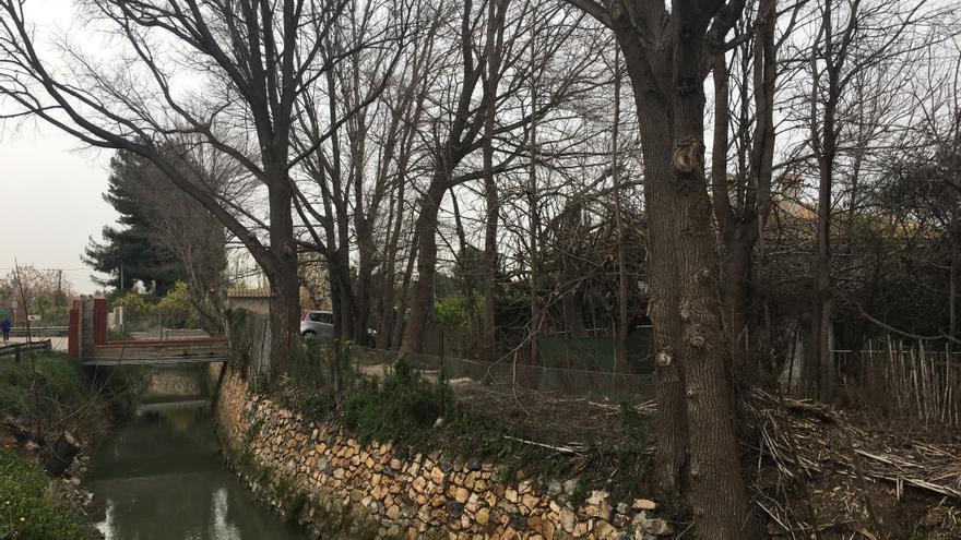 Acequia de Alfatego, con bosque de ribera protegido