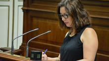 El PSOE pide a Clavijo que demuestre el mismo interés por los productores de cochinilla que por los jugadores de 'e-sports'