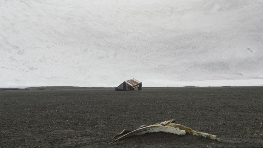 Restos de huesos de ballenas en la isla Decepción del archipiélago de las Shetland del Sur, en la Antártida