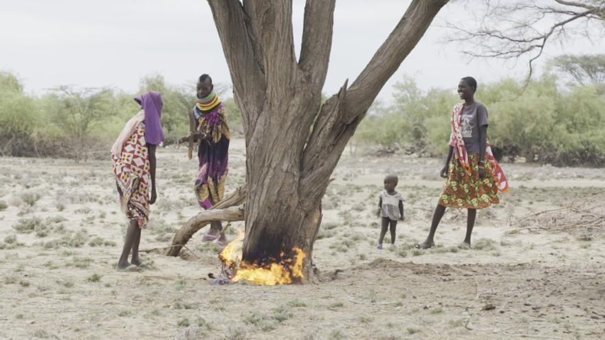 """""""Por culpa de esta sequía, nuestra única opción de conseguir algo de dinero es vendiendo bolsas de carbón en los mercados locales"""", dice Ngimoloi Lorot"""