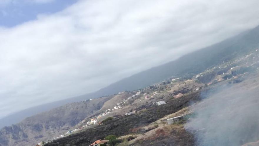 En la imagen, conato de incendio registrado este domingo en Mirca (Santa Cruz de La Palma)