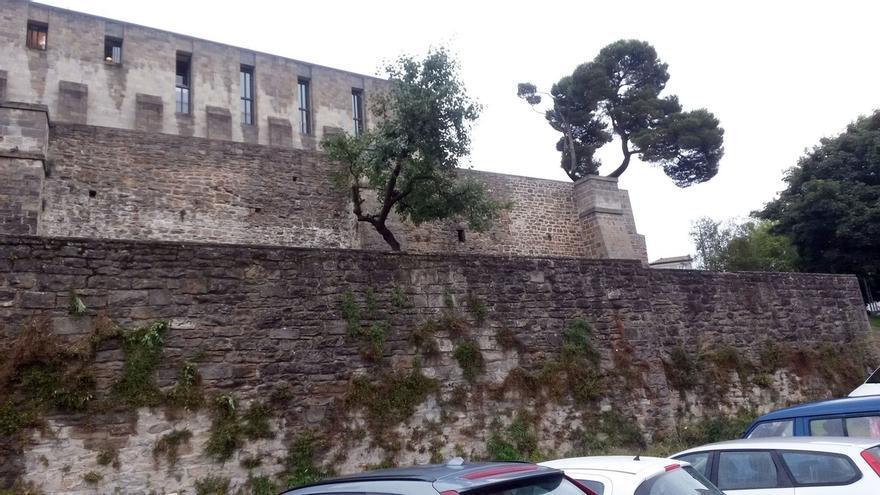 El Ayuntamiento intervendrá en mantenimiento del muro bajo de los Jardines de Palacio para consolidar su estructura