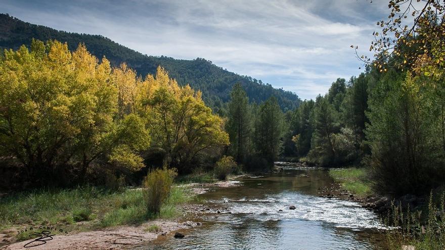 Cuenca Ahora, Pueblos Vivos, Serranía Celtibérica y Ecologistas en Acción, contra una macrogranja porcina que usaría 25 millones de litros de agua al año