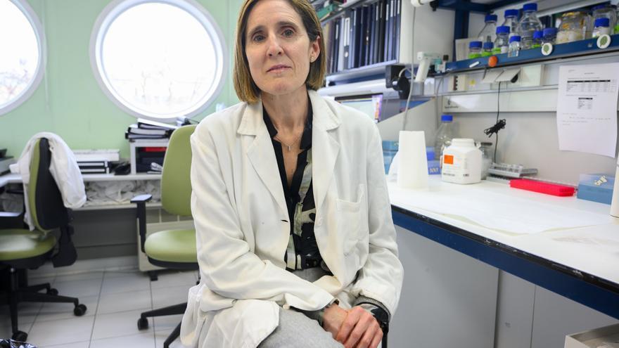 Isabel Solá, directora en el Centro Nacional de Biotecnología.