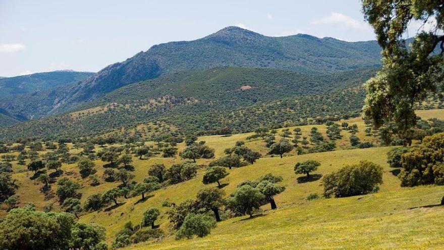 Ley de Paisaje de Castilla-La Mancha: seis propuestas de los arquitectos para su protección, gestión y ordenación
