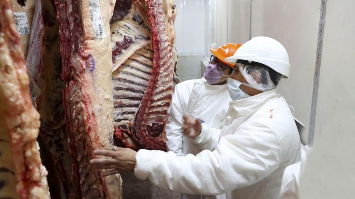 La AFIP realizó un operativo de fiscalización en 150 frigoríficos
