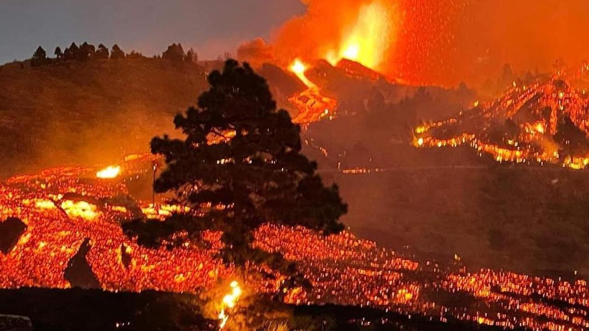 Avance de la lava en la noche de este domingo en La Palma