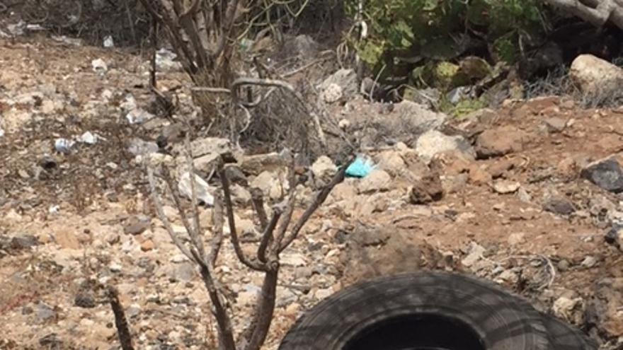 Residuos agolpados en el lateral de una carretera que debe mantener la Corporación insular, en Arona