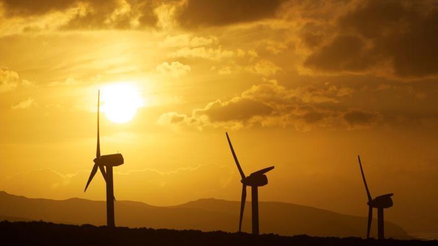 La eólica, primera fuente de generación hasta junio en la Península, con un 22,6 % del total