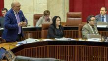 Diputados de Vox en el Parlamento de Andalucía.