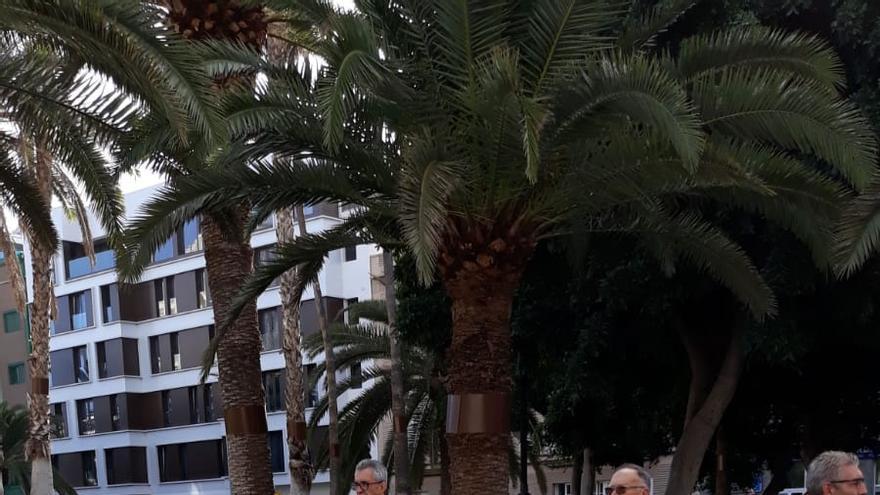 Pancartas de protesta este viernes en Las Palmas de Gran Canaria