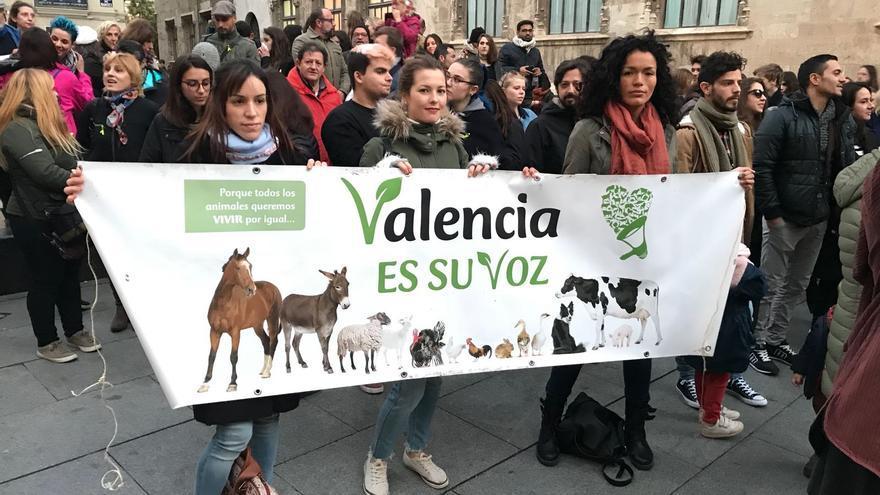 Algunos de los participantes en la manifestación antitaurina convocada por Pacma en Valencia