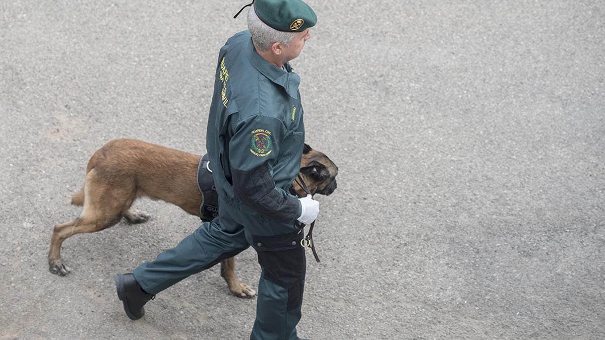 Un agente de la Guardia Civil.