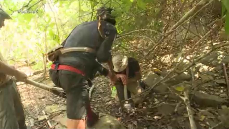 Pantallazo del programa 'La isla'. Intentan provocar la muerte a un caimán ejerciendo presión con la punta de un machete, parece que entre la cabeza y el cuello.