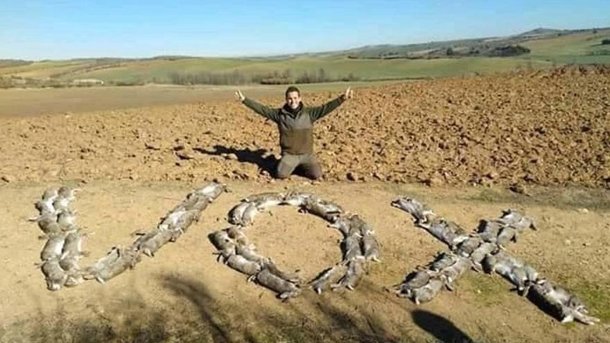 """Un cazador escribe la palabra """"Vox"""" con cadáveres de conejos"""