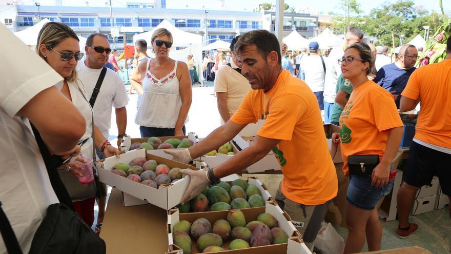 Feria del Mango y del Aguacate de Mogán (Alejandro Ramos)