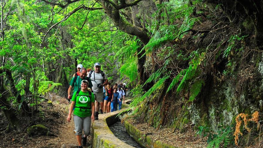 Imagen de archivo de un grupo de senderistas de excursión por La Palma.