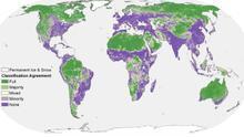 ¿A qué se refieren los científicos que aseguran que el 46% de la Tierra se mantiene casi inalterado?
