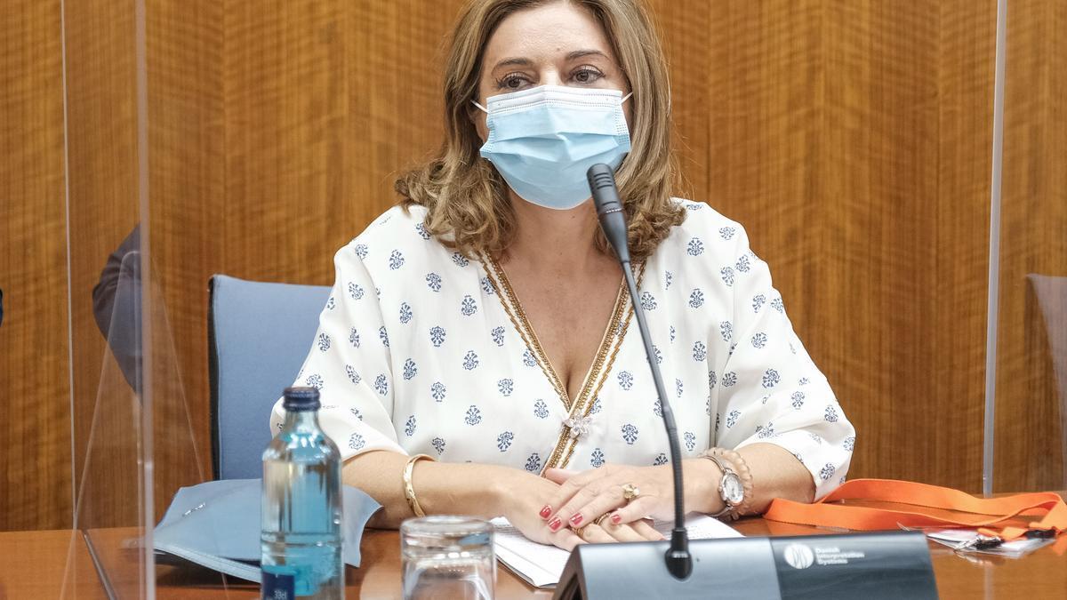 Carmen Ibanco, este viernes en la comisión de investigación de la Faffe del Parlamento andaluz