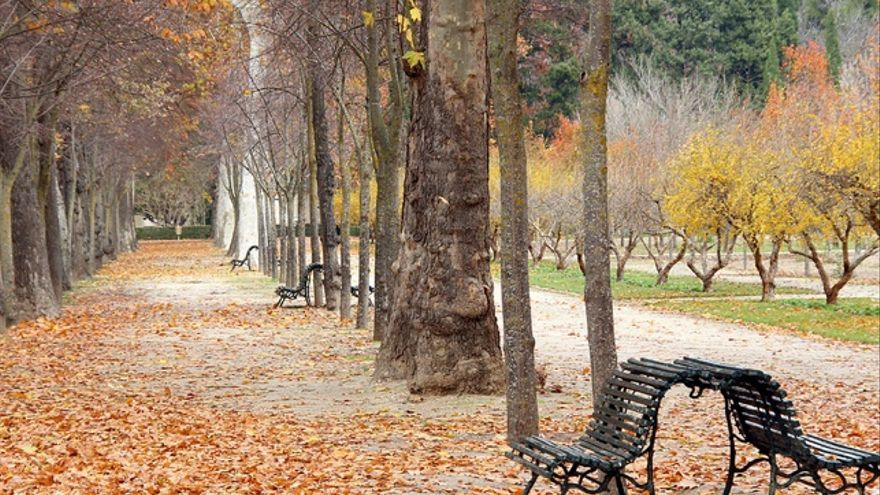 ¿Por qué enfermamos más en otoño e invierno?