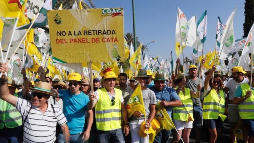 Miles de olivareros convocados por los sindicatos COAG y UPA durante la manifestación convocada este martes por las calles de Sevilla