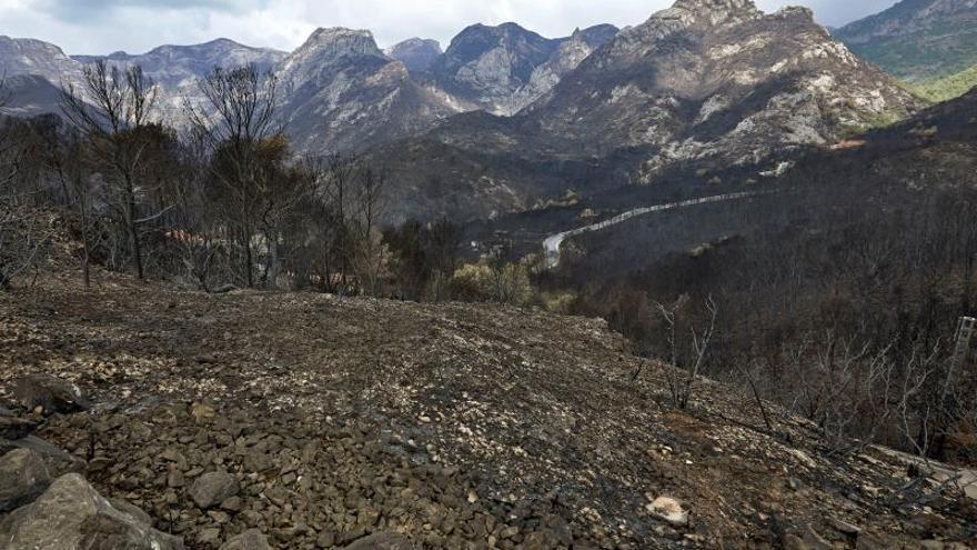 Extinguido el incendio de Llutxent tras arrasar en 7 días 3.270 hectáreas