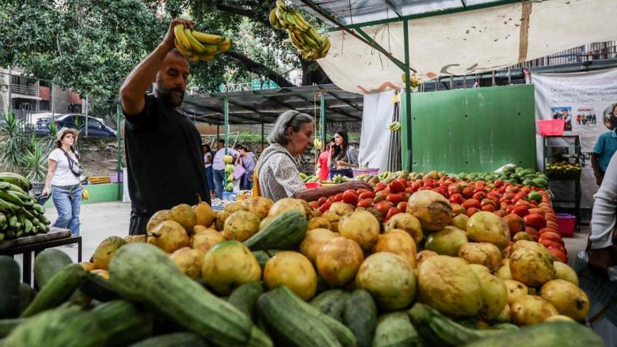 Panamá acumula una tasa de inflación de -0,4 % entre enero y octubre de 2019