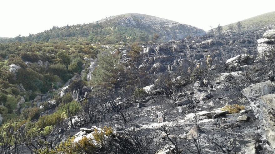 El incendio ha quemado unas 80 hectáreas de matorral