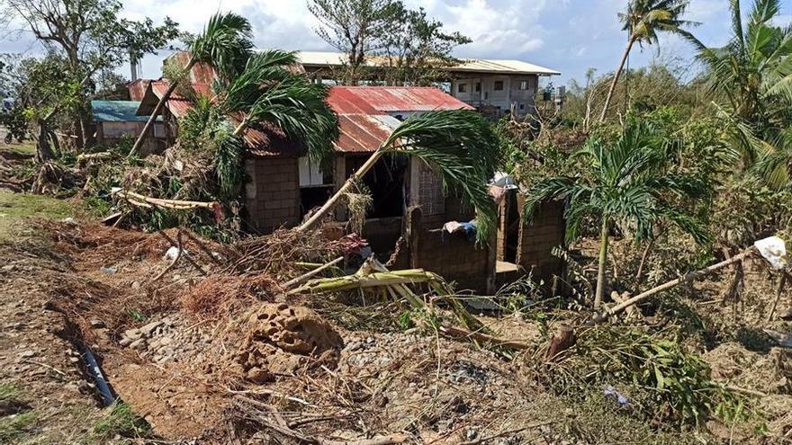 Cocoteros derribados sobre una casa en la ciudad de Balasan, en la provincia de Ilo-Ilo, Filipinas, en la mañana 26 de diciembre tras el paso de Phanfone.