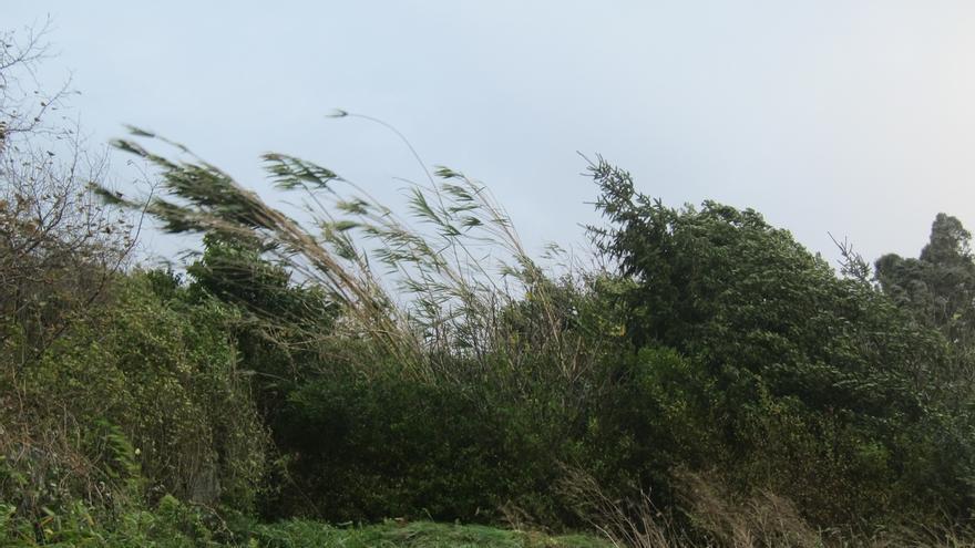 La alerta amarilla por viento de este domingo se elevará el lunes a naranja, con rachas de más de 120 km/h